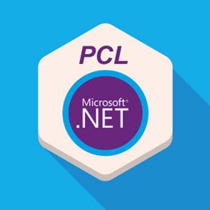 PCL-NET